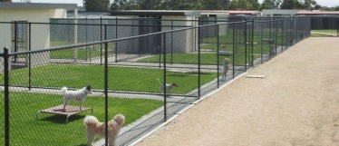 melbourne-pet-kennels